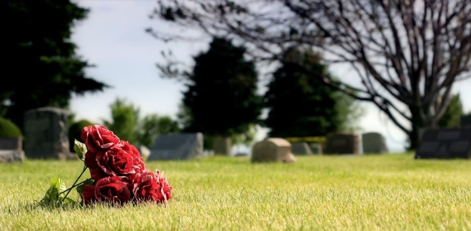 a close up photo of roses in cemetery grounds | frequently asked questions about wrongful death